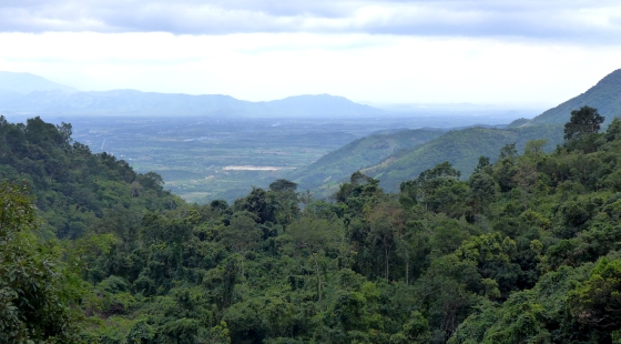 The view from the top of the pass heading to Dalat — oohs and ahhs sold separately.