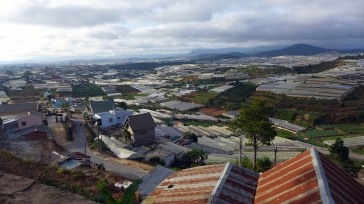 Dalat is known for its flowers and fruit, the rolling hills surrounding the town dotted with hundreds of greenhouses and plantations.